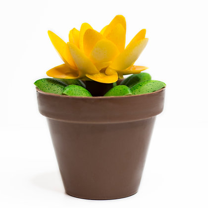 Maceta de Chocolate Flor Amarilla