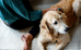 Take Better Care of Your First Dog with These Apps