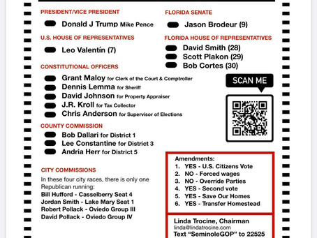 Seminole County Voter Guide
