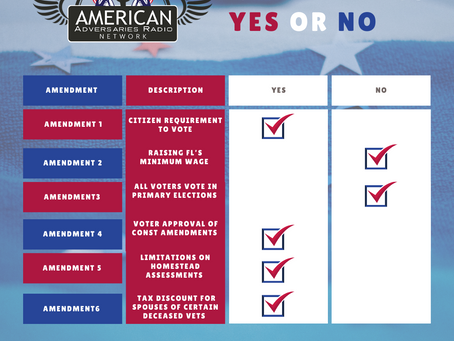 2020 Amendment Voting Guide