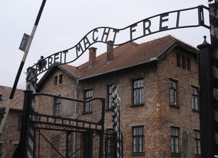 FIRST-EVER 50-STATE SURVEY ON HOLOCAUST KNOWLEDGE OF AMERICAN MILLENNIALS AND GEN Z REVEALS SHOCKING