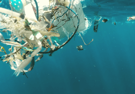 Recycled Ocean Plastic: Greenwashing or Not?