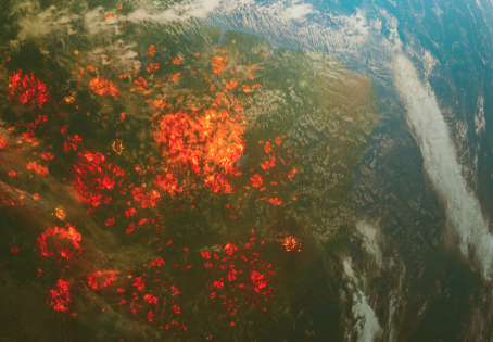 Global Climate Crisis. The Year The World Was On Fire