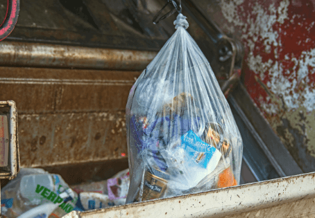 BIG BAG BAN: The Unintended Consequences of Banning Single-Use Plastic Bags