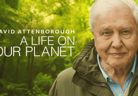 David Attenborough: A Life On Our Planet Plus Other Documentaries to Motivate you for Climate Action