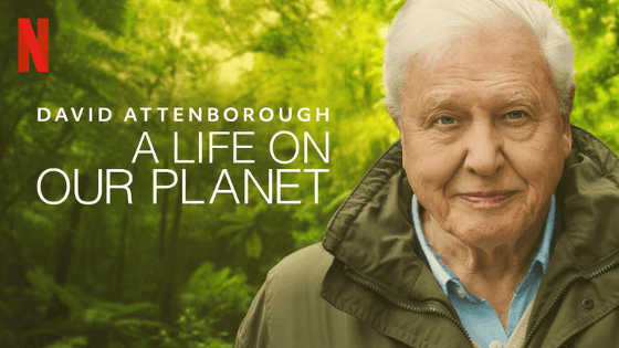 A life on our planet 2020 David Attenborough documentary