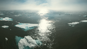 What to do to stop Climate Change