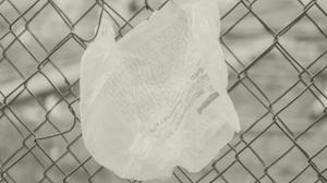 Plastic bag ban Australia
