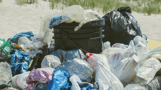 single-use plastic bag ban