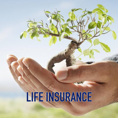 life insurance image.png