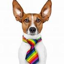 LGBTQ Ellesmere Port Pride Fun Day
