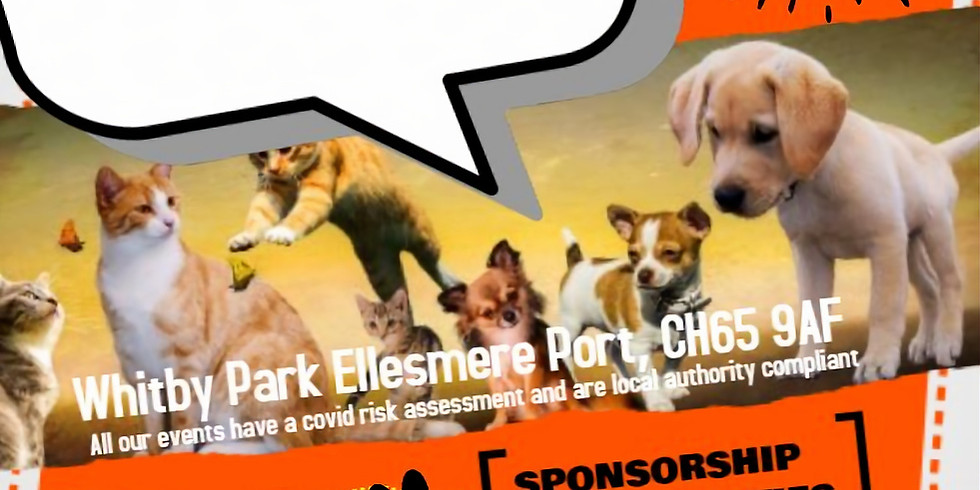Paws In  The Port 2021