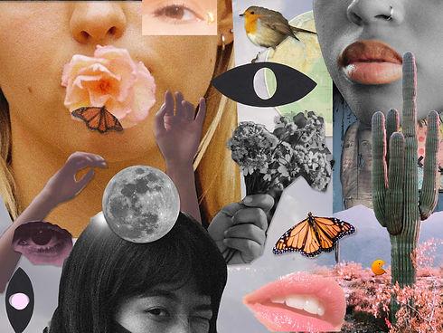 Cheek Collage2_rectangle.jpg