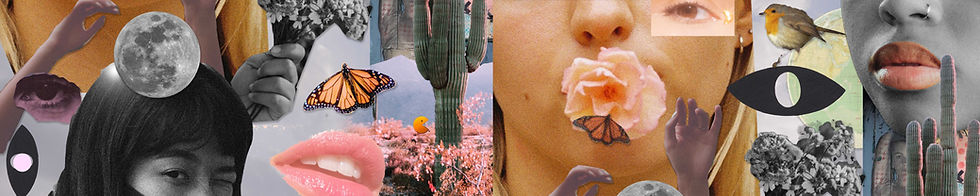 Cheek Collage2_header long copy.jpg
