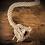 Thumbnail: Lampara Soquete Vintage Cuerda 12 Unidades