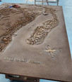 Amazing Historic Bronze Map Created