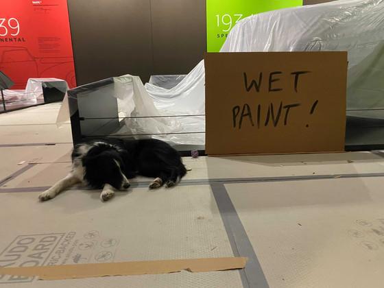 Wet Paint