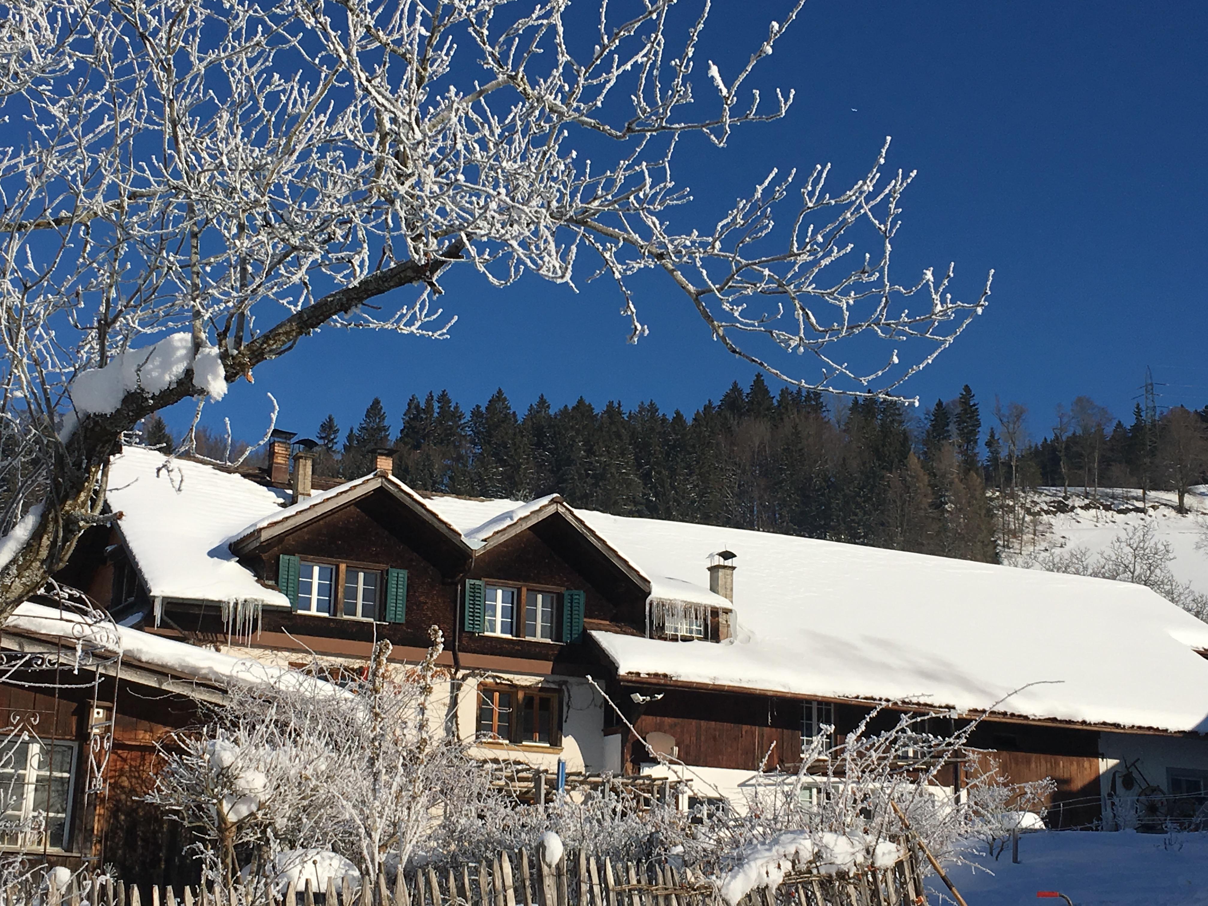 Wohnhaus im Schneemantel