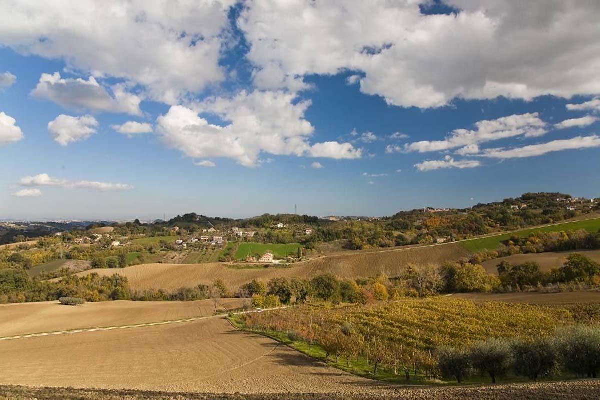 Villa Lucrezia Marche yourescape (1)