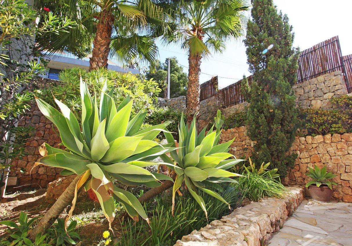 Villa Martin Ibiza your escape (2)