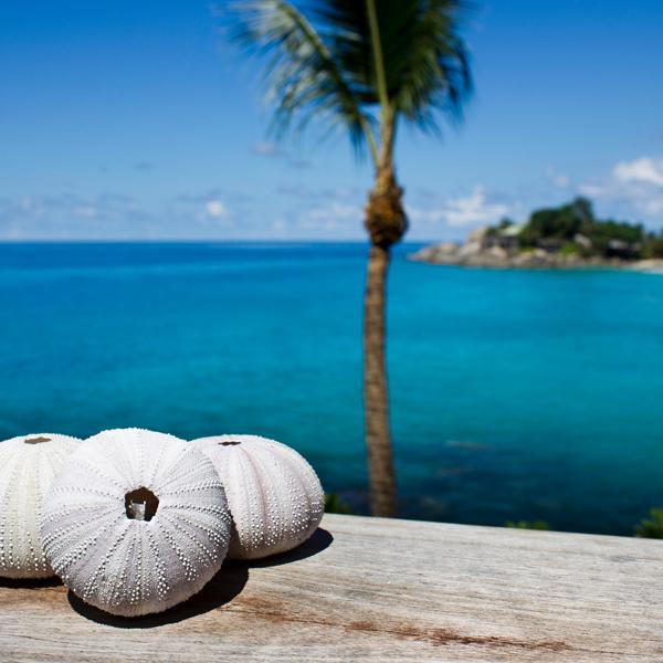 Carana Beach Resort Seychelles your escape (5)