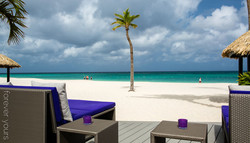 hochzeitslocation-eagle-beach-bucuti-aruba-karibik-05.jpg