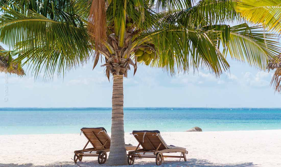 Konokono Beach Resort Zanzibar  your escape-11