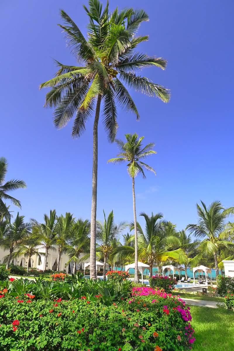 Baraza Beach Resort your escape (13)