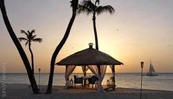 hochzeitslocation-eagle-beach-bucuti-aruba-karibik-01.jpg