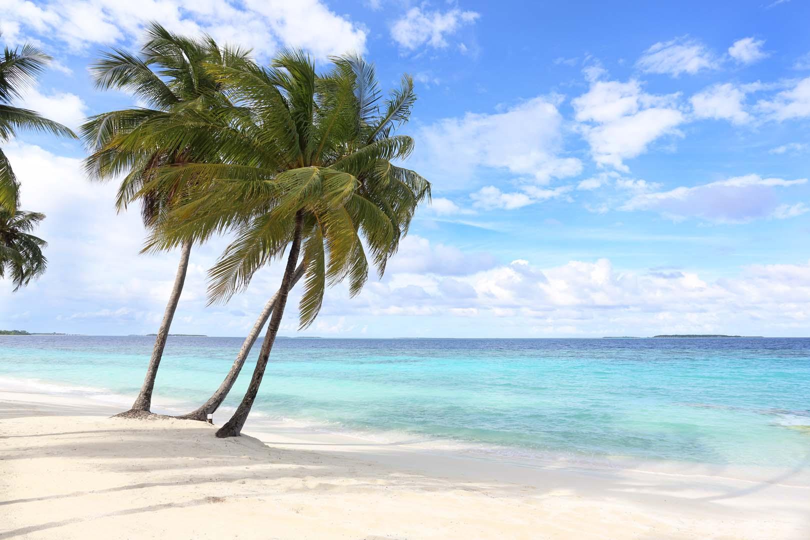 Amilla Fushi Maldives your escape (1)