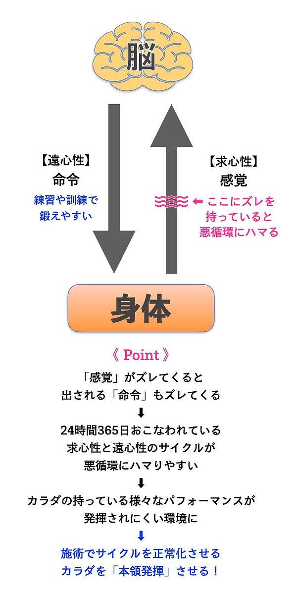 安全ピンサイクル.jpg