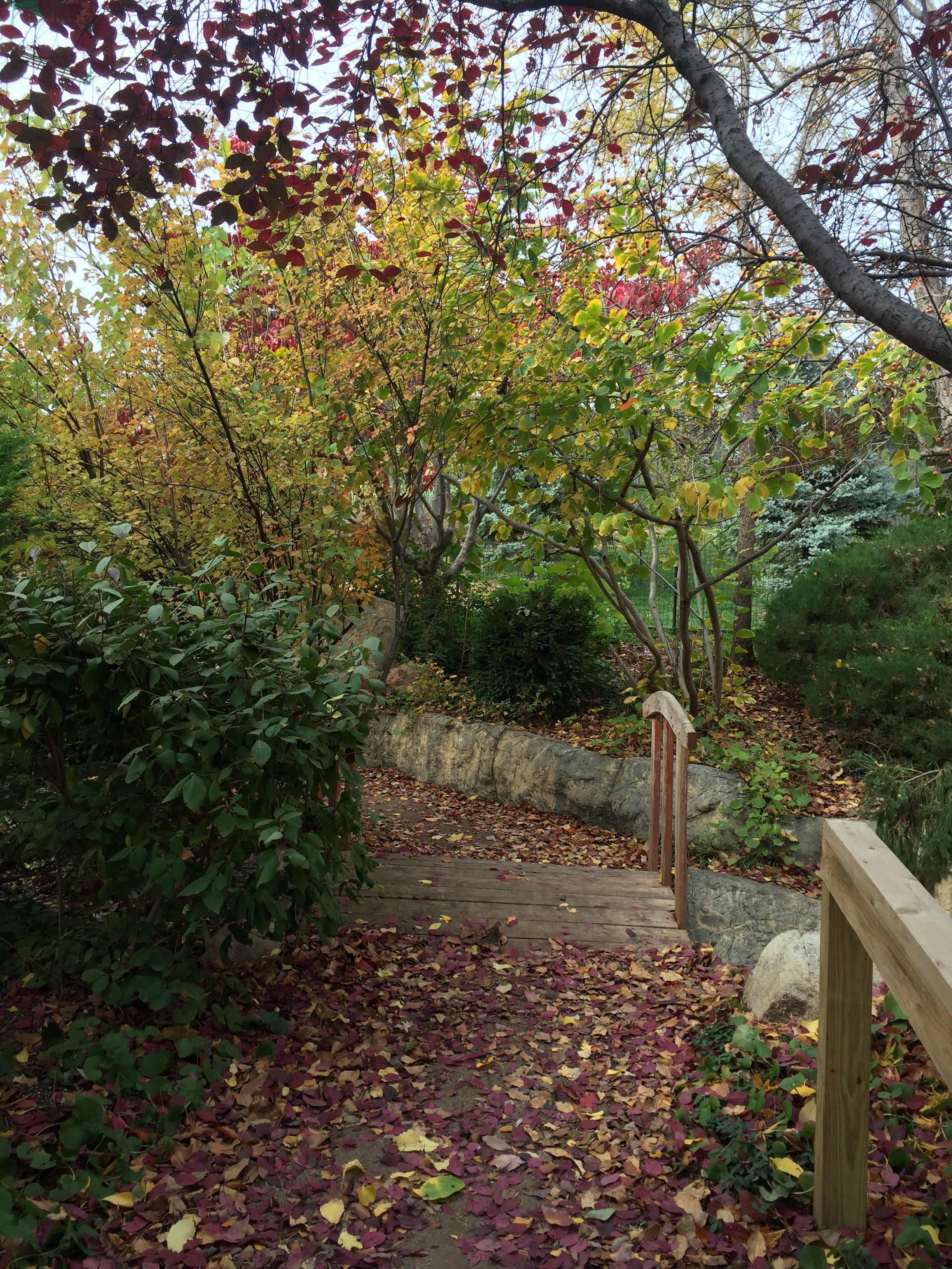 Omaha Henry Doorly Zoo Garden Path