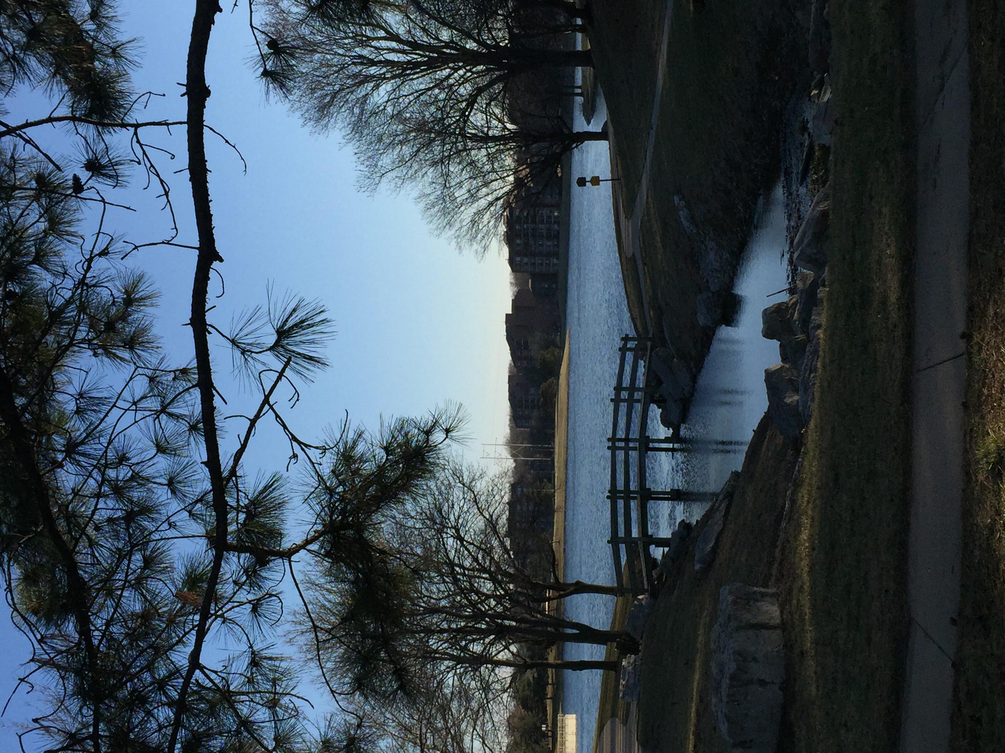 Legacy Park Lake