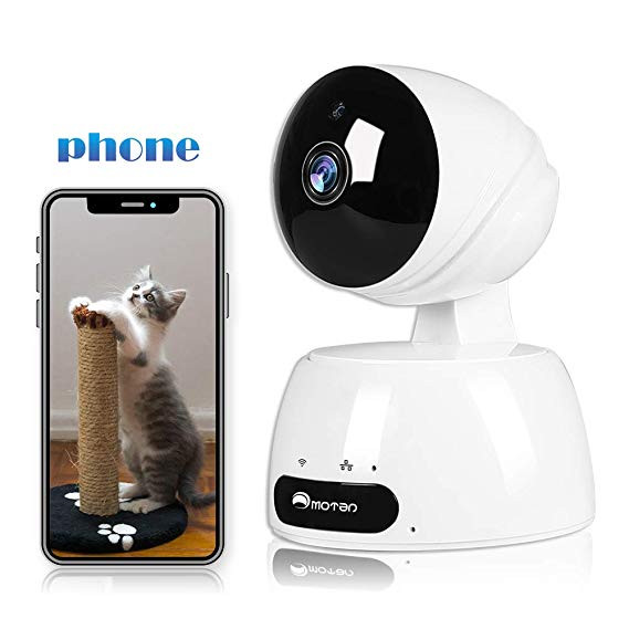 Home Security Camera for Dog Training