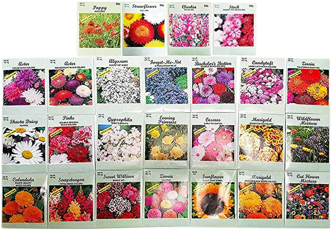 Flower Seeds From Amazon