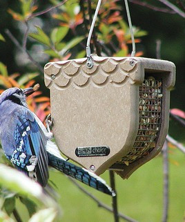 Acorn Shaped Bird Feeder From Zulily