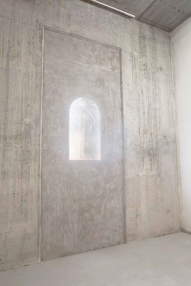 """Palm Tree"" Window installation  Plastic relief, defusing filter, concrete 115cm x 300cm"