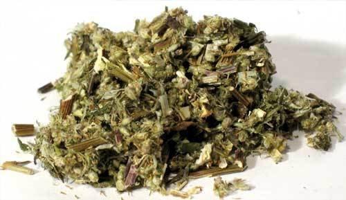 Mugwort Cut 2 oz (Artemisia vulgaris)