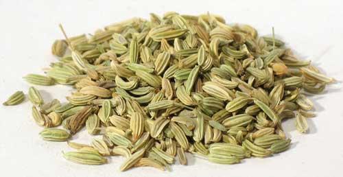 Fennel Seed 4 oz (Foeniculum vulgare)