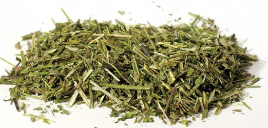 Scullcap Cut 1 oz (Scutellaria lateriflora)
