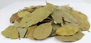 Bay Leaves, Whole 2 oz (Laurus nobilis)