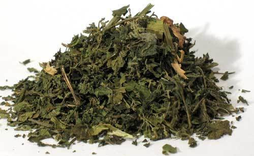 "Nettle ""Stinging"" Leaf Cut 2 oz (Urtica dioica)"