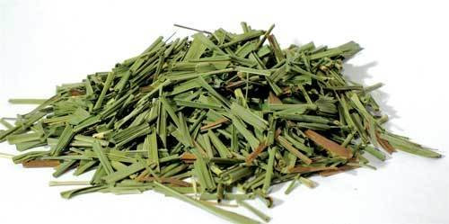 Lemongrass Cut 2 oz (Cymbopogon citratus)