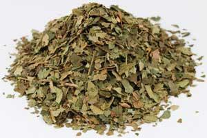 Witch Hazel Leaf Cut 1 oz (Hamamelis virginiana)