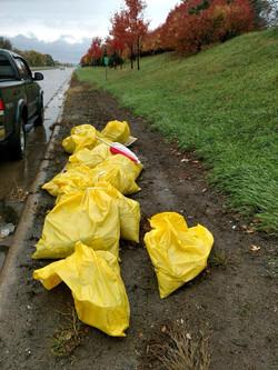 highway clean up volunteering