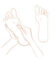 Hands Working Feet.png