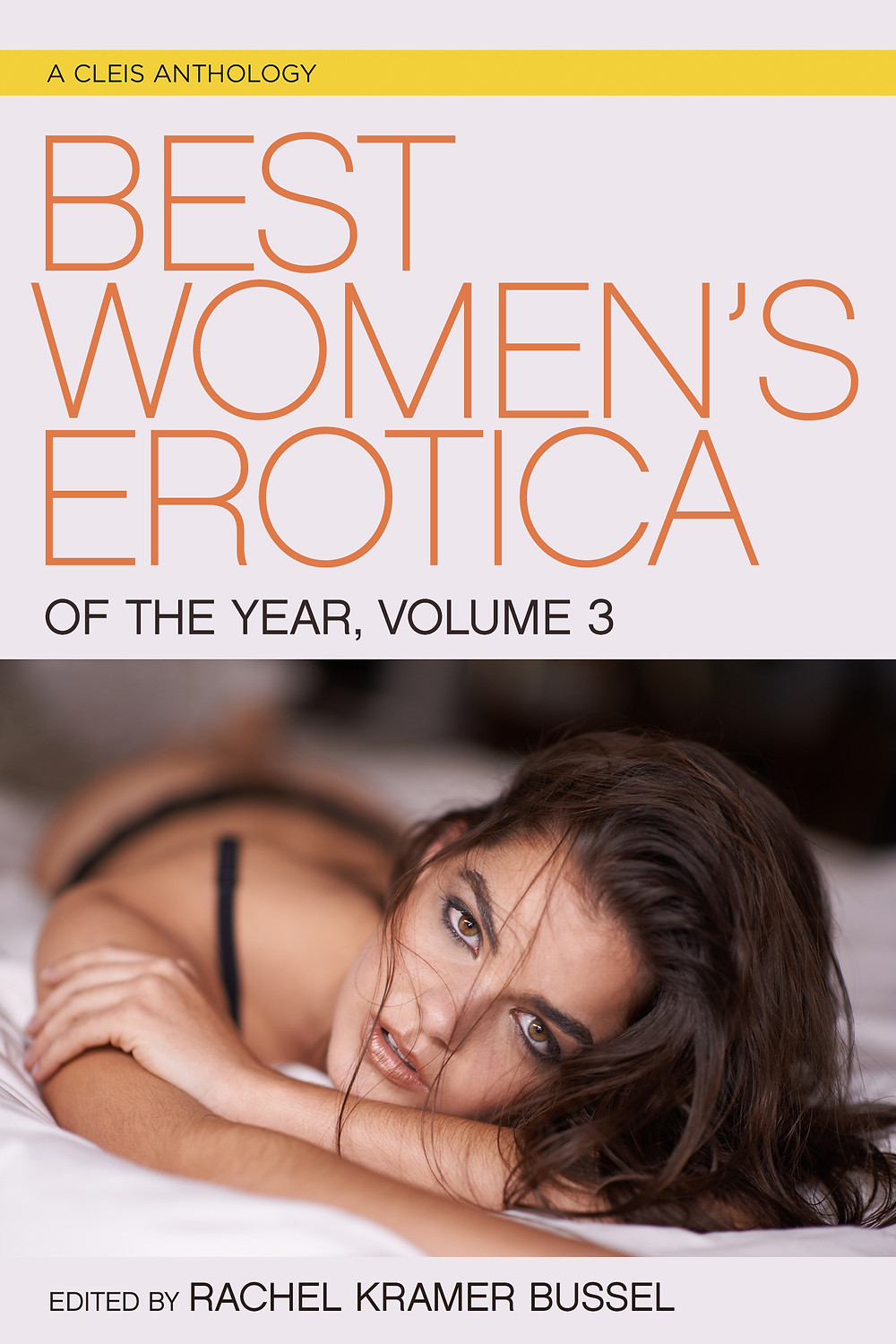 woman in bra and panties staring at camera erotica book cover
