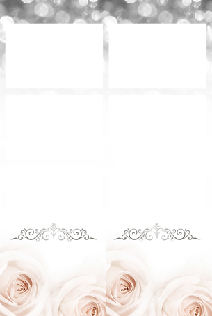overlay-pink-light-roses-silver-top.png