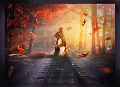 Squirrel Image Manipulation