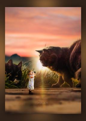 Huge Cat Image Manipulation